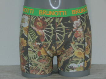 BRUNOTTI MEN Leaf print short (BRU55)